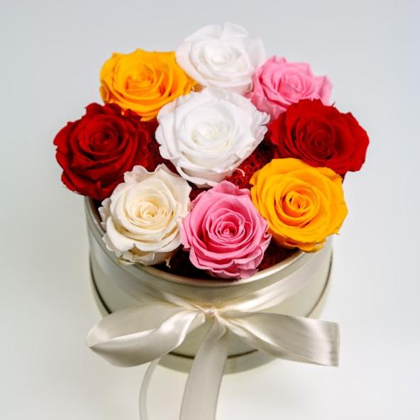 Box stabilizovaných ruží 9ks mix farieb