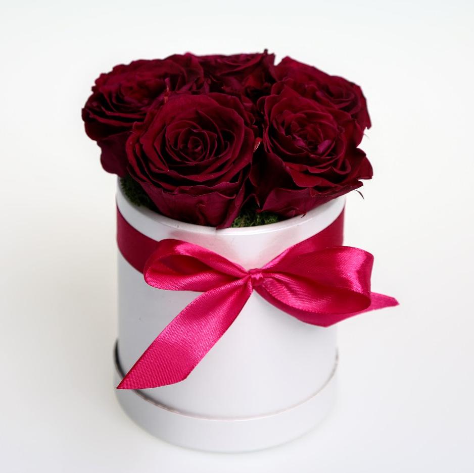 Box stabilizovaných ruží 5ks červený