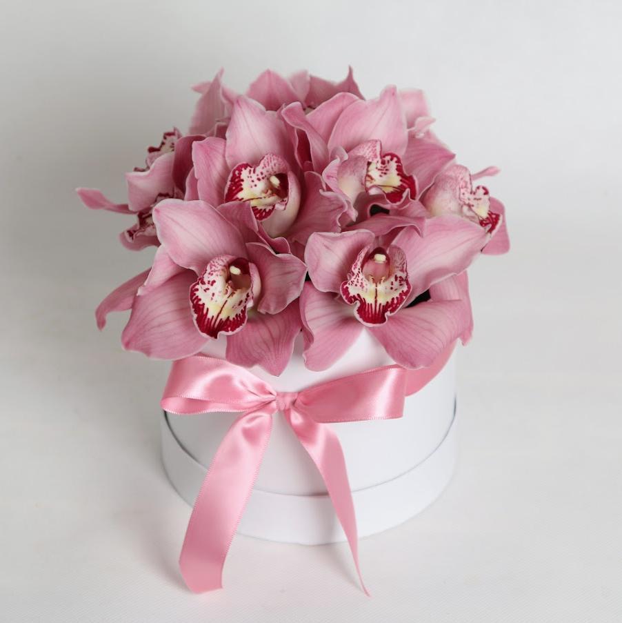Krabička Orchidea ružová