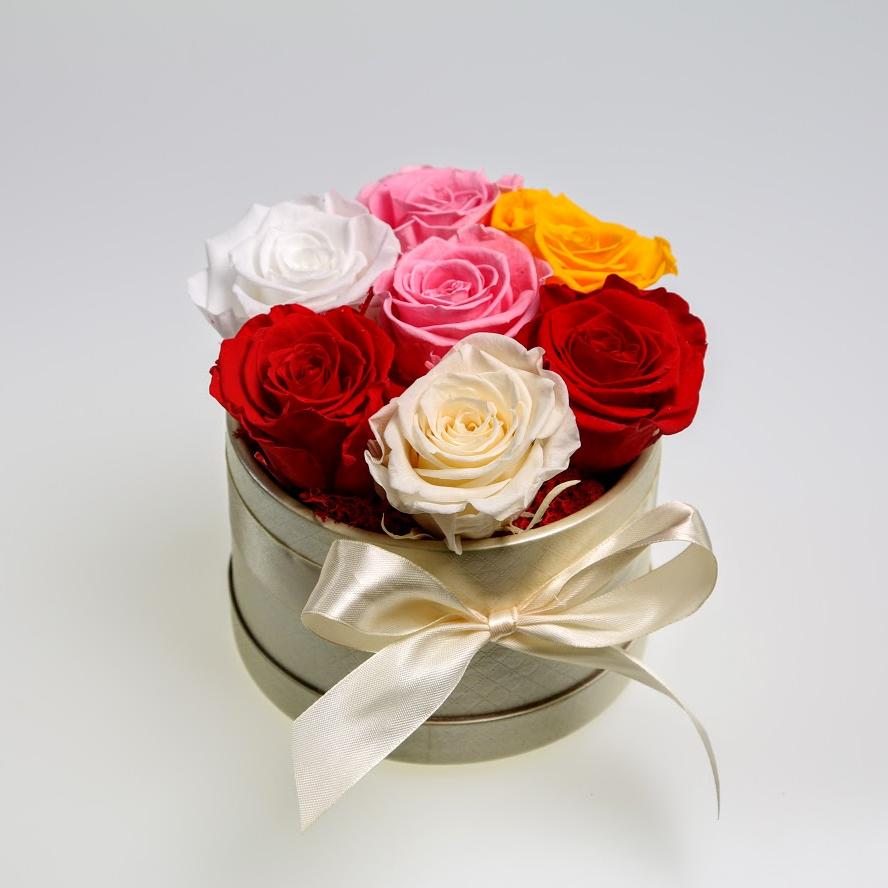 Box stabilizovaných ruží 7ks mix farieb