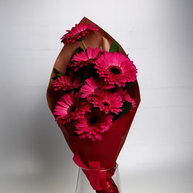 Kytica gerbier v kornúte ružová