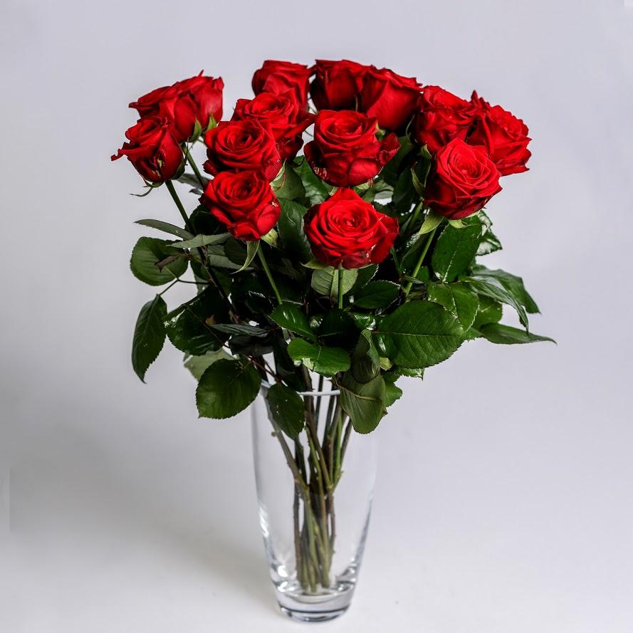 Ruža červená Standard 60cm 1ks