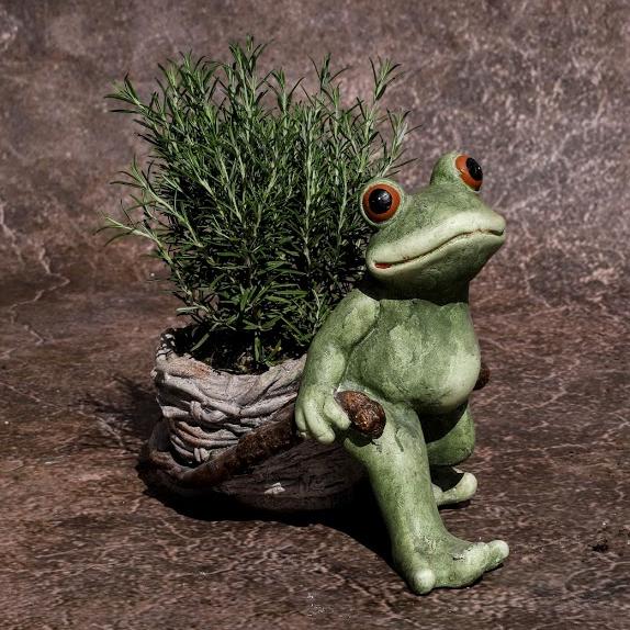Črepník Žaba s fúrikom