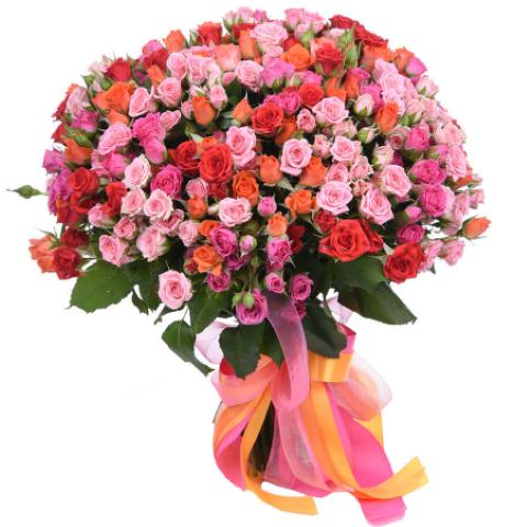 Kytica 101 trsových ruží