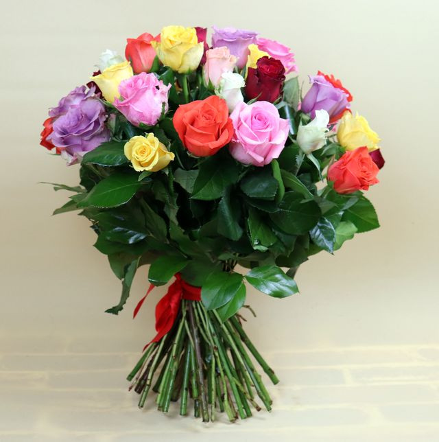 Kytica farebných ruží Standard