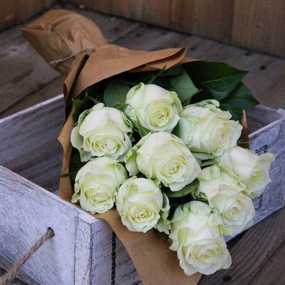 Biele ruže v kornúte