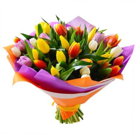 Krásna kytica tulipánov s doručením v Bratislave