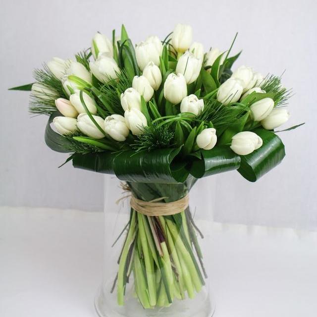 Kytica Exkluzív tulips 45ks
