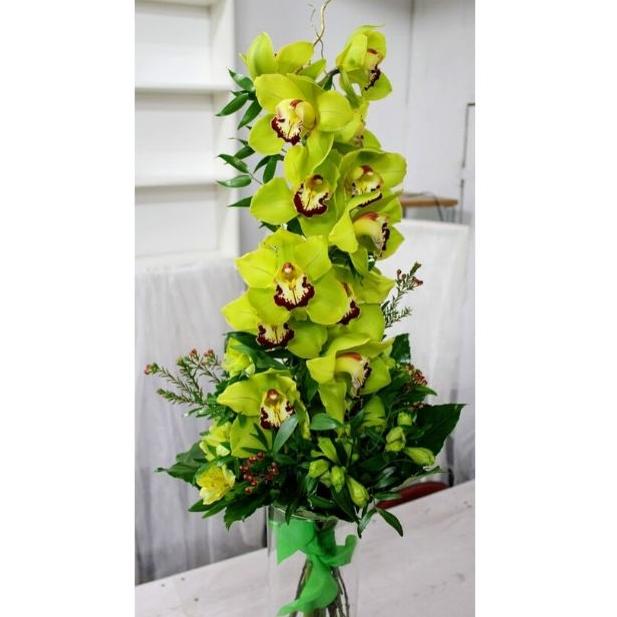 Orchidea na výšku zelená