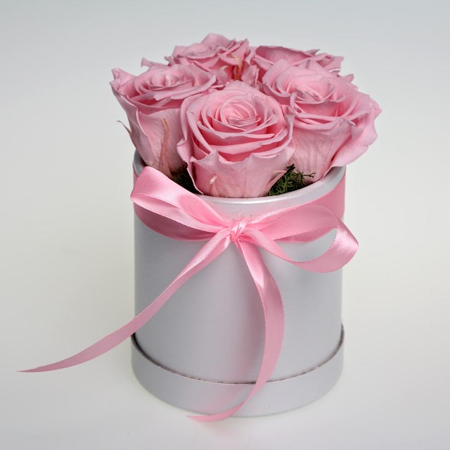Box stabilizovaných ruží 5ks ružový