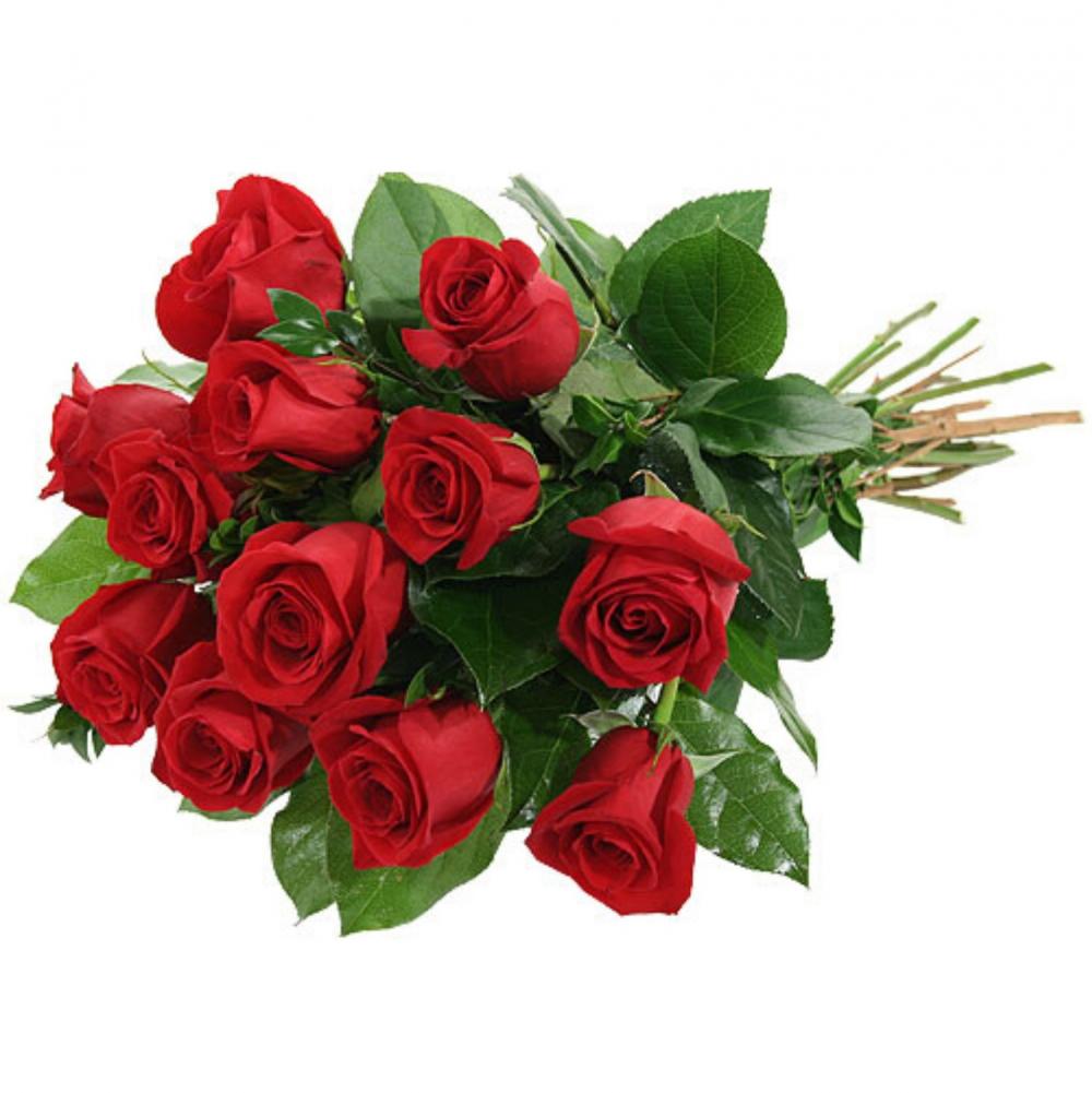 Kytica Extra ruží