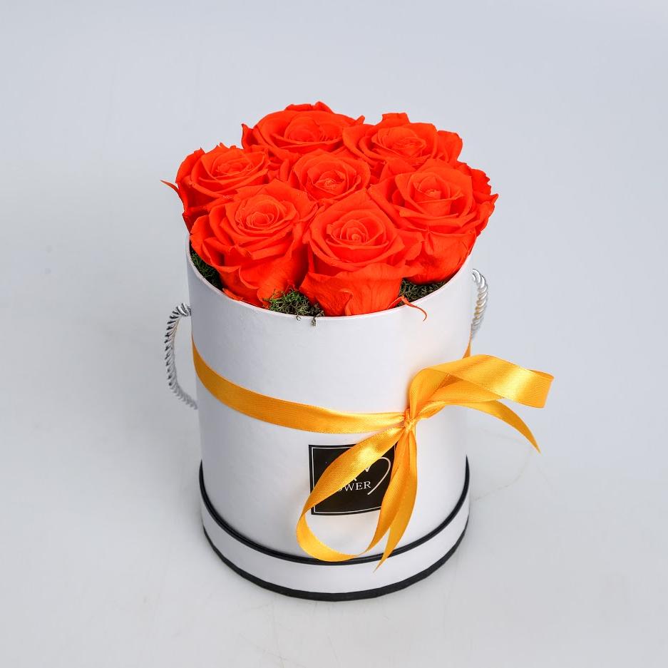 Box stabilizovaných ruží oranžový 7ks