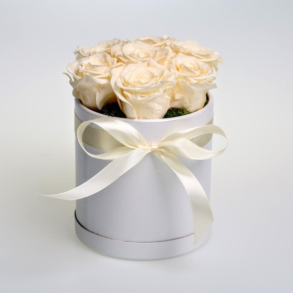 Box stabilizovaných ruží 7ks biely