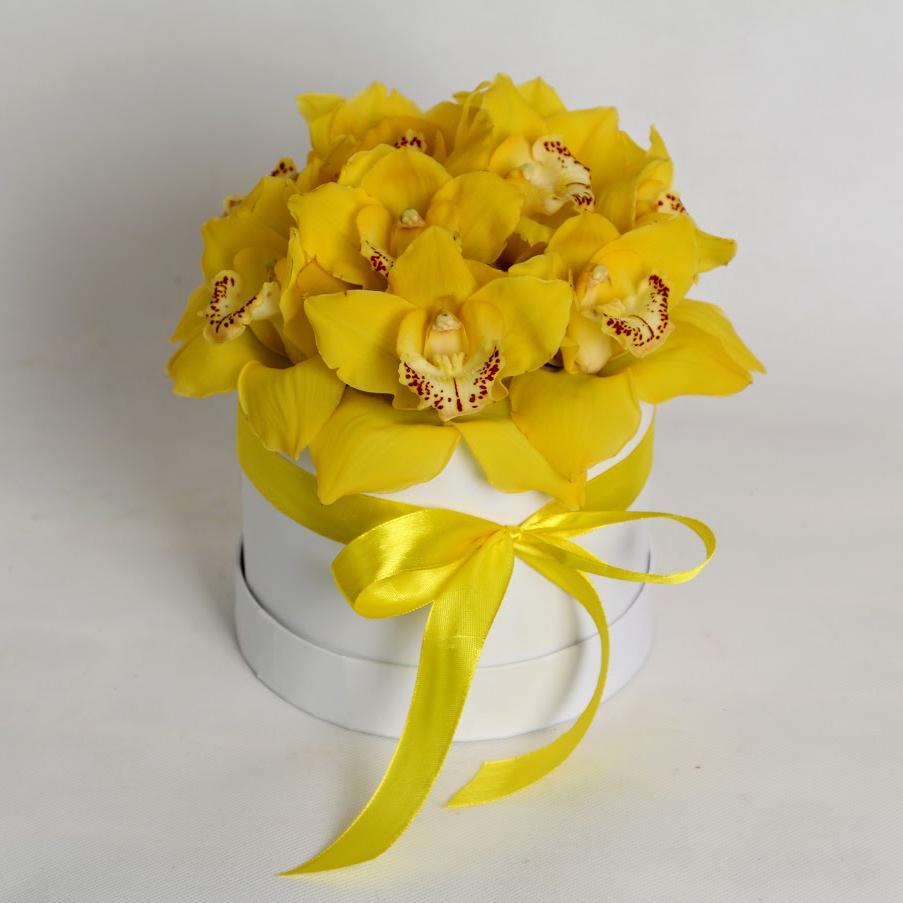 Krabička Orchidea žltá