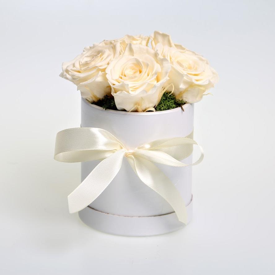 Box stabilizovaných ruží 5ks biely